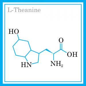 Ingredients-theanine